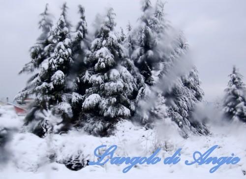 paesaggio3.jpg