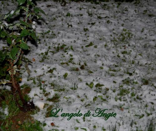 nevicata2.jpg